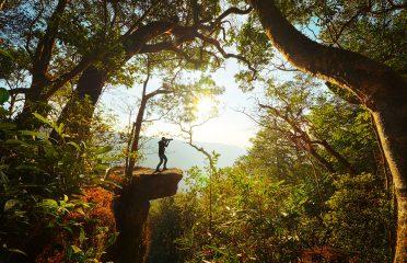 Parco Nazionale Khao Yai